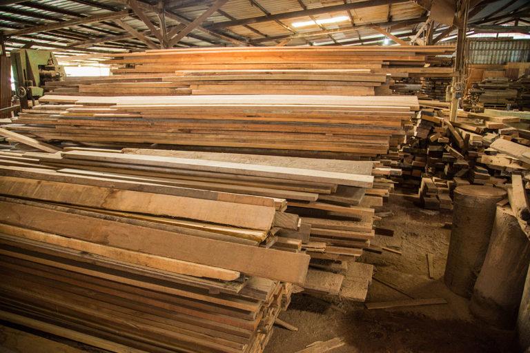 timber-3