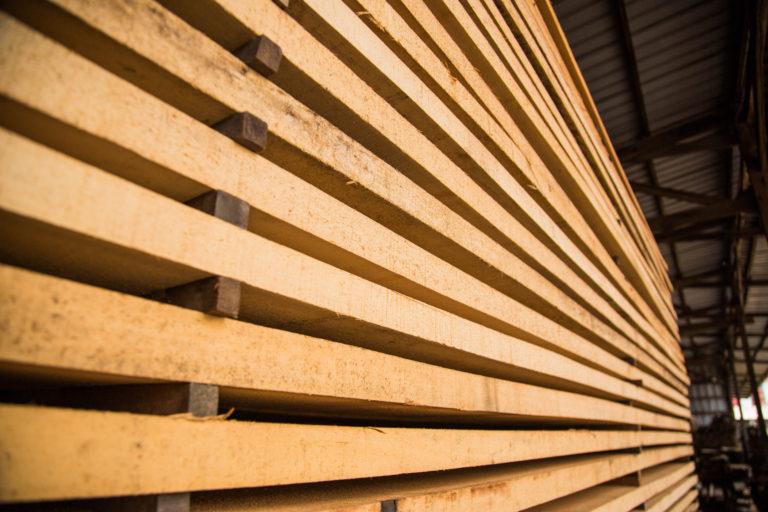 timber-9